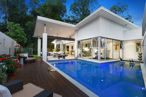 Space, Peace And Privacy – Rainforest Backdrop