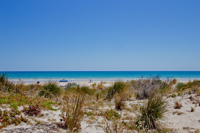 Photo - 10/194 Seaview Road, Henley Beach South SA 5022  - Image 13