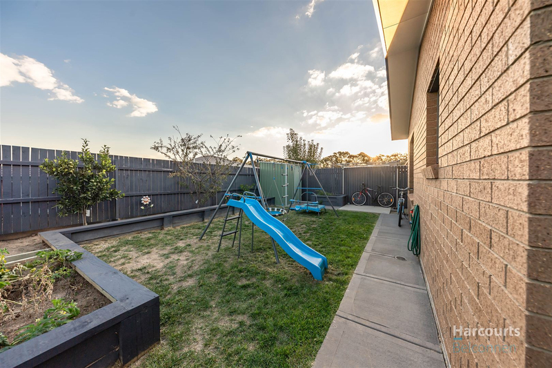 Photo - 11 Gulwan Street, Ngunnawal ACT 2913  - Image 11