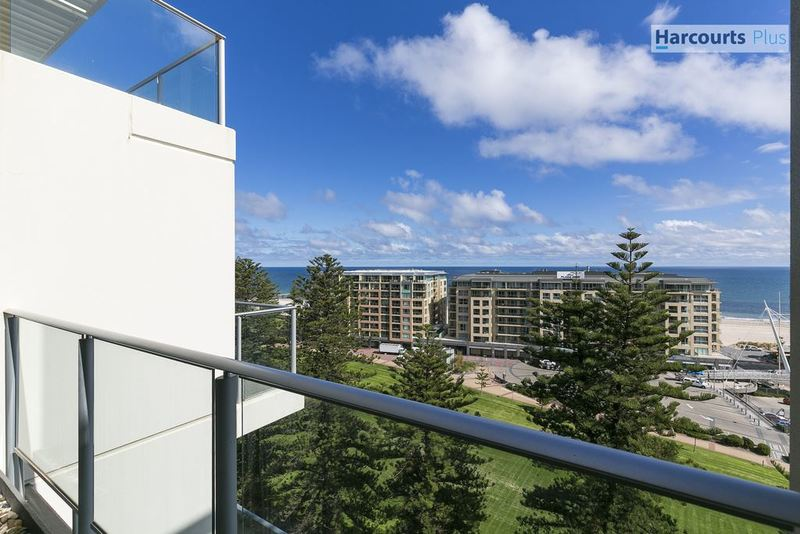 1105 25 colley terrace glenelg sa 5045