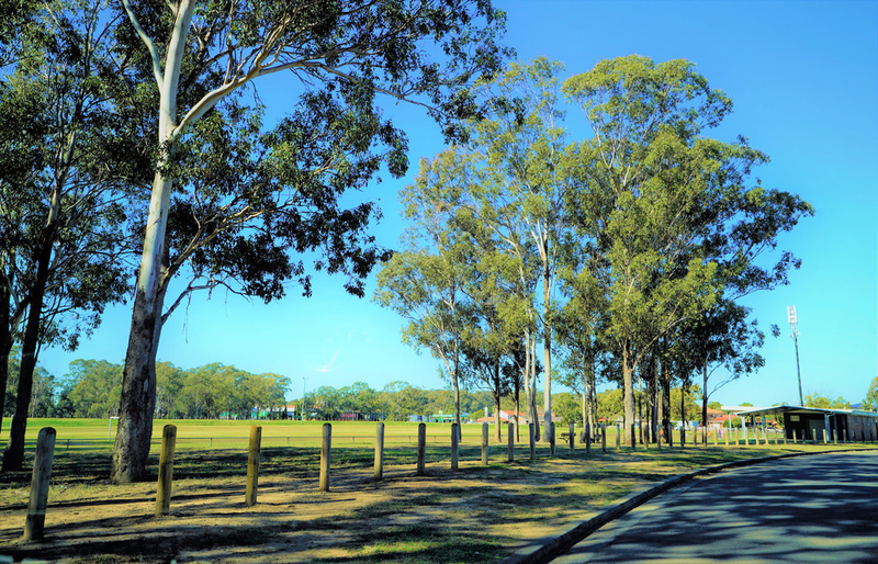 Photo - 135 Sweethaven Road, Bossley Park NSW 2176  - Image 15
