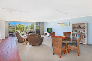 BEACHFRONT PERFECTION IN COTTON TREE