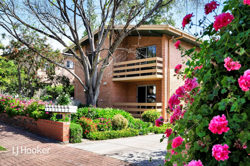 1/77 Lockwood Road, Burnside SA 5066