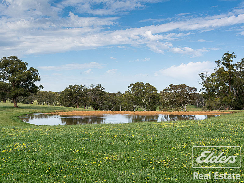 Photo - 189 Hillyfields Road, Kangarilla SA 5157  - Image 12