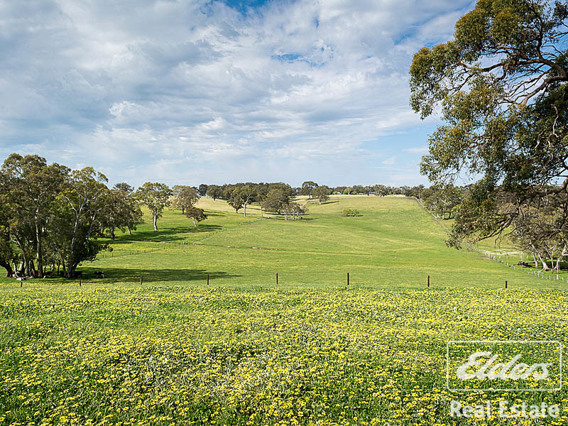 Photo - 189 Hillyfields Road, Kangarilla SA 5157  - Image 14