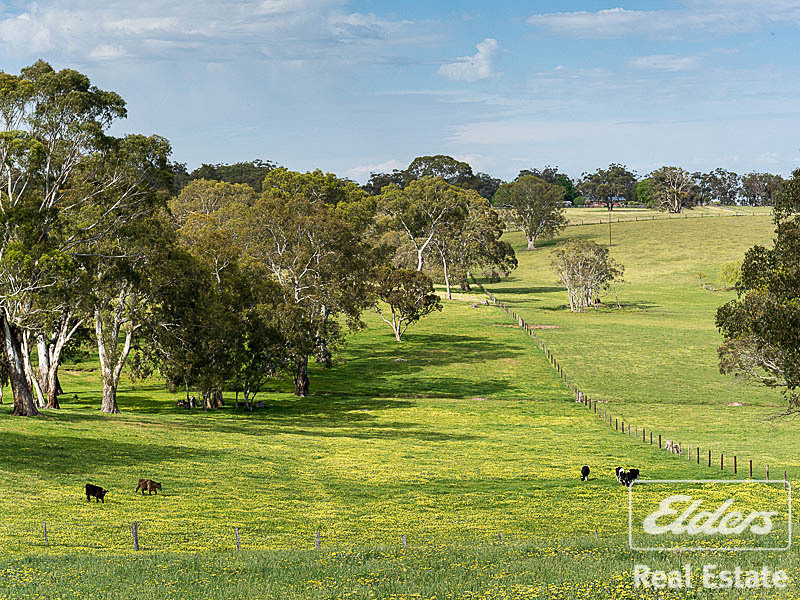 Photo - 189 Hillyfields Road, Kangarilla SA 5157  - Image 19