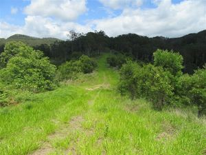 TROPICAL, 123 acres, offering a Private Lifestyle