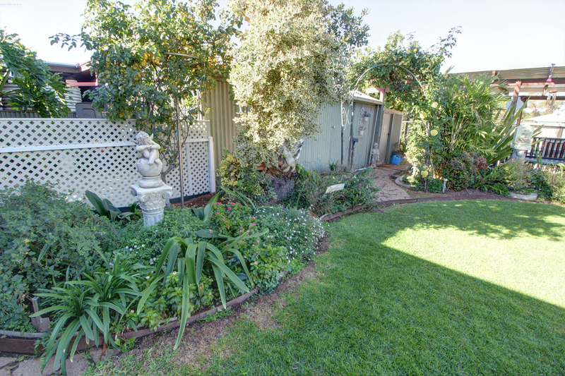 Photo - 22 Gilbert Street, Berri SA 5343  - Image 16