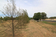 Photo - 25 Heiligmans Lane, Tamworth NSW 2340  - Image 3