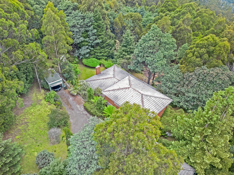 Photo - 27 Grays Road, Fern Tree TAS 7054  - Image 23
