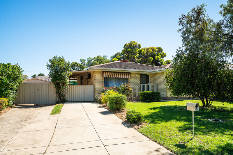 3 Merbien Avenue, Hope Valley SA 5090