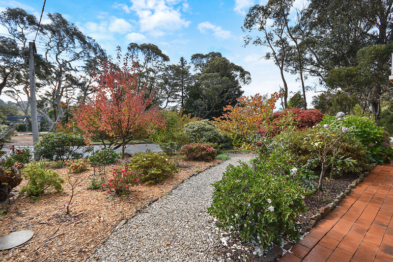 white, blonde, Xxx interracial in africa i'm exploring lot new