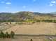 Photo - 317 Molesworth Road, Molesworth TAS 7140  - Image 1