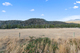 Photo - 317 Molesworth Road, Molesworth TAS 7140  - Image 7