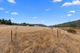 Photo - 317 Molesworth Road, Molesworth TAS 7140  - Image 12
