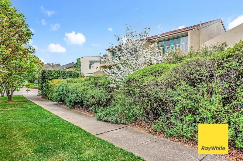 Photo - 32/53 Mcmillian Crescent, Griffith ACT 2603  - Image 3