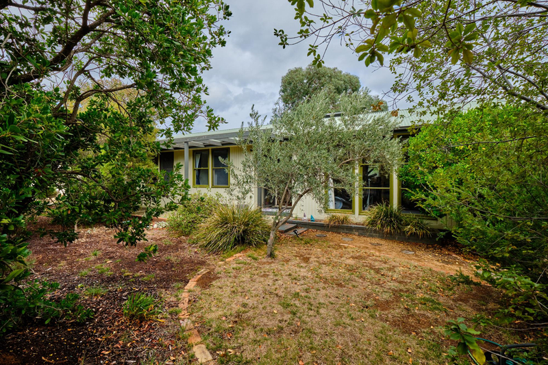 Photo - 35 Fairbridge Crescent, Ainslie ACT 2602  - Image 3