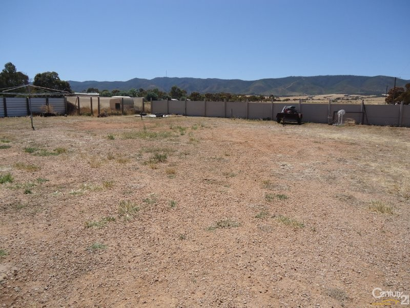 Photo - 356 Nelshaby Road, Napperby SA 5540  - Image 13