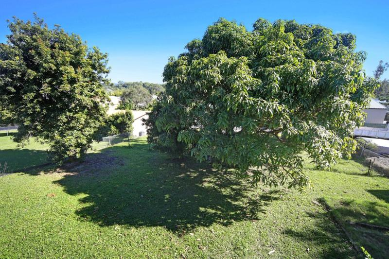 Photo - 36 Miva Street, Cooroy QLD 4563  - Image 4