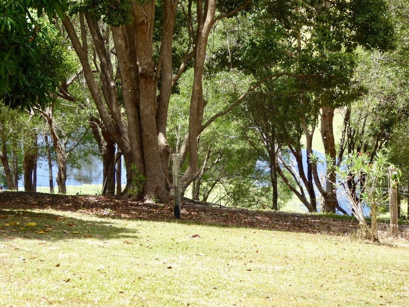 Photo - 40 Belleden Place, Cooroy QLD 4563  - Image 5