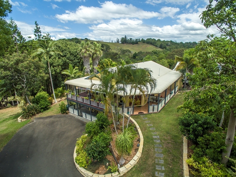 Photo - 40 Belleden Place, Cooroy QLD 4563  - Image 1