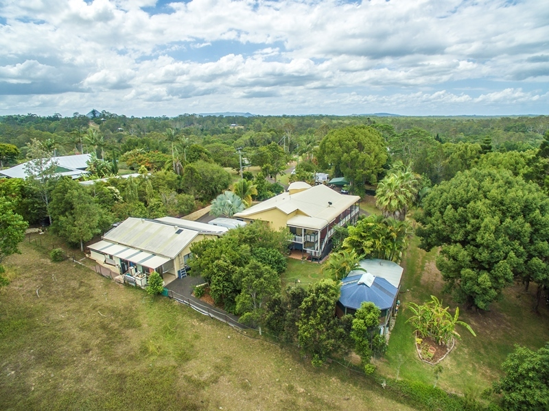 Photo - 40 Belleden Place, Cooroy QLD 4563  - Image 4