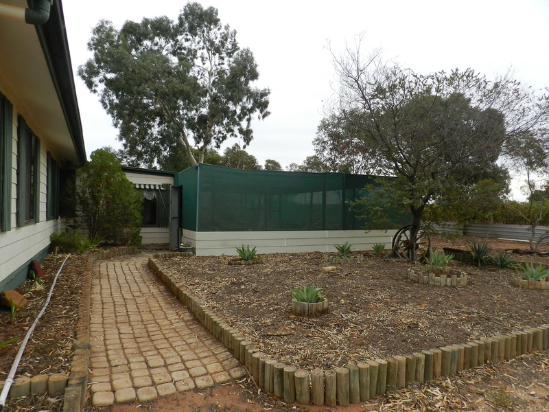 Photo - 40 Wilkinson Road, Loveday SA 5345  - Image 2