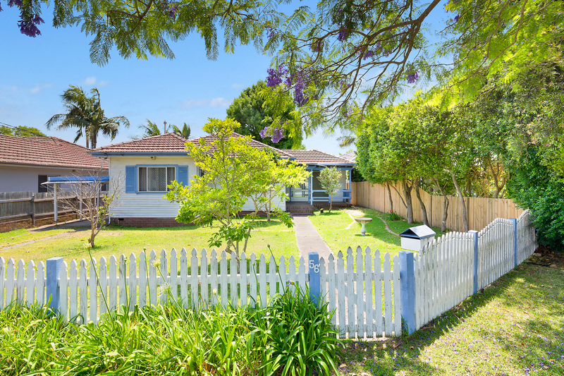 56 Amourin Street, North Manly NSW 2100