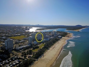 COTTON TREE LIFESTYLE -  VALUE BUY