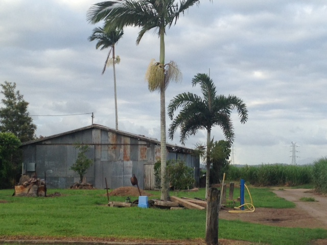 Photo - 63 Victoria Mill Road, Ingham QLD 4850  - Image 3