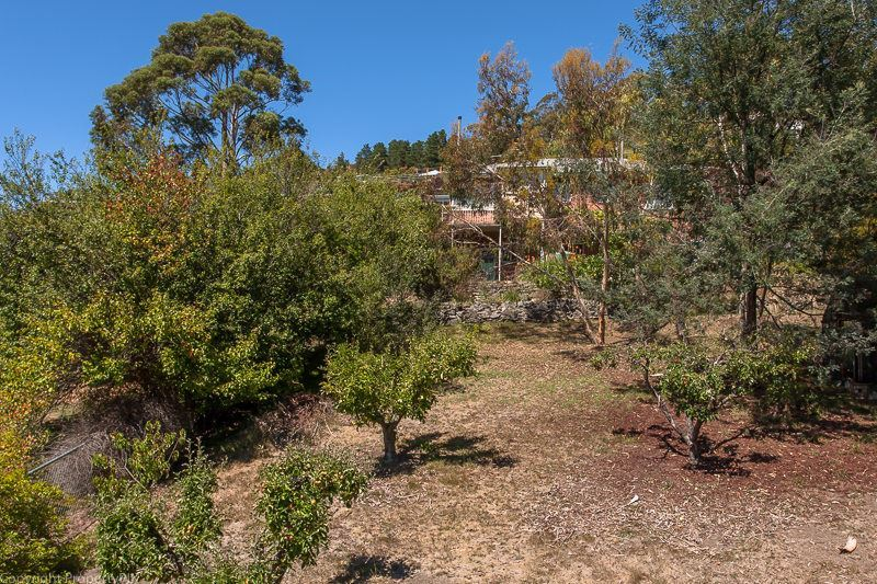 Photo - 81 Wentworth Street, South Hobart TAS 7004  - Image 14