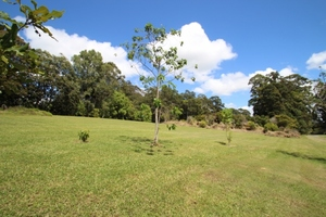 All Usable 2 Acres In Buderim