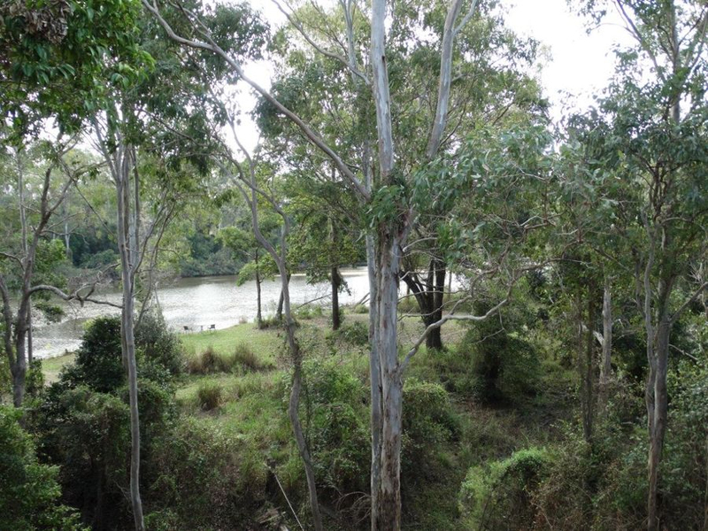 Photo - 859 Ferry Road, Rosedale QLD 4674  - Image 9