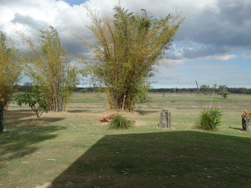 Photo - 859 Ferry Road, Rosedale QLD 4674  - Image 13