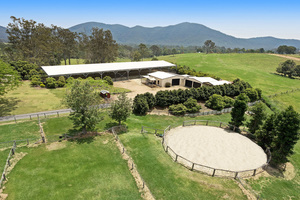 A horse-lover's paradise with world-class facilities