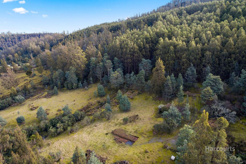 Photo - Lot 0 Braslins Road, Black Hills TAS 7140  - Image 3