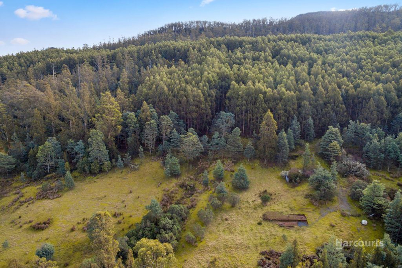 Photo - Lot 0 Braslins Road, Black Hills TAS 7140  - Image 4
