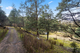 Photo - Lot 0 Braslins Road, Black Hills TAS 7140  - Image 5