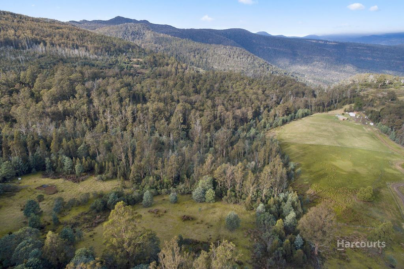 Photo - Lot 0 Braslins Road, Black Hills TAS 7140  - Image 11