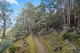 Photo - Lot 0 Braslins Road, Black Hills TAS 7140  - Image 13
