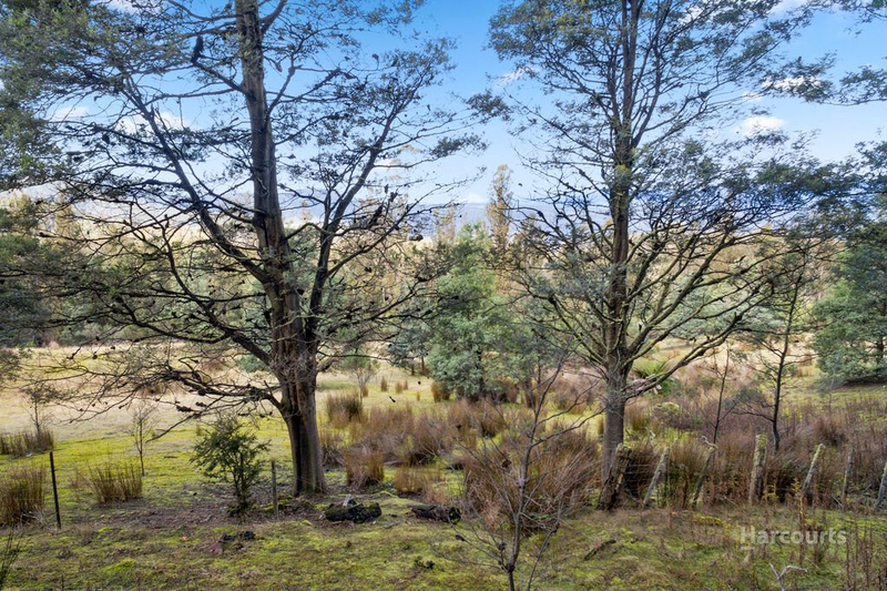 Photo - Lot 0 Braslins Road, Black Hills TAS 7140  - Image 14