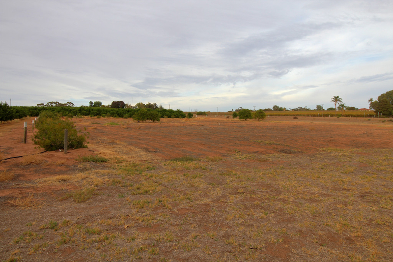Lot 1 Holmes Road, Kingston On Murray SA 5331
