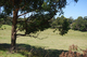 Photo - Lot 1 Thorpes Lane, Lakes Entrance VIC 3909  - Image 3