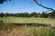 Photo - Lot 1 Thorpes Lane, Lakes Entrance VIC 3909  - Image 4