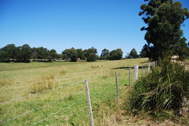 Photo - Lot 1 Thorpes Lane, Lakes Entrance VIC 3909  - Image 9