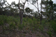Photo - Lot 17 Tollard Dr Rokeby TAS 7019  - Image 3