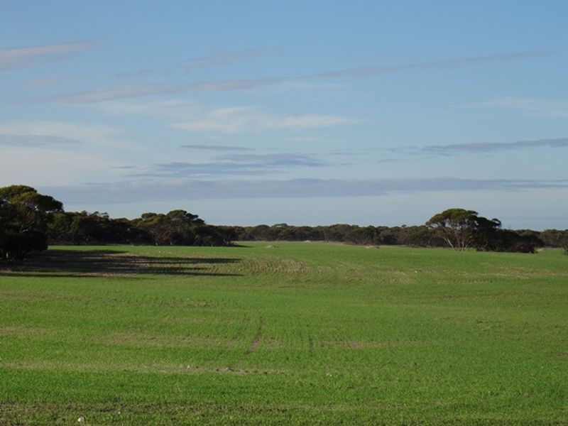 Lot 25 Chaunceys Line Rd Monarto South SA 5254