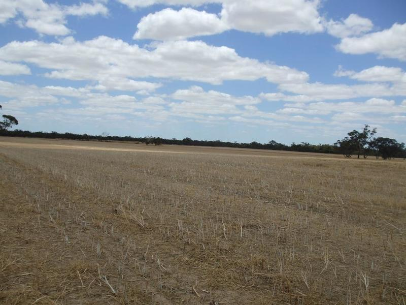 Photo - Lot 3 & 12 Cnr Dukes & Ngarkat Hwy Bordertown SA 5268  - Image 3