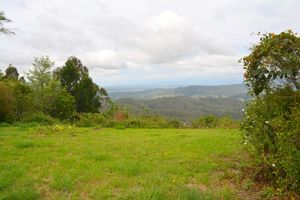 BEAUTIFUL LAND PARCEL ON MOUNTAIN VIEW ROAD