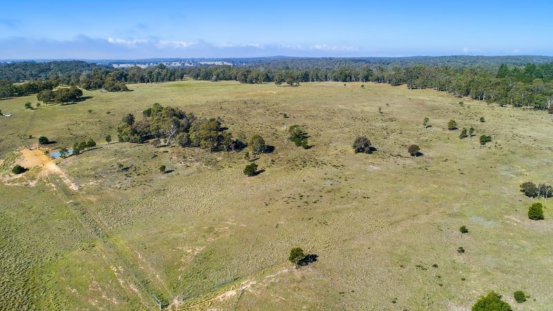 Photo - Lot 5 1114 Bullamalita Road, Goulburn NSW 2580  - Image 11